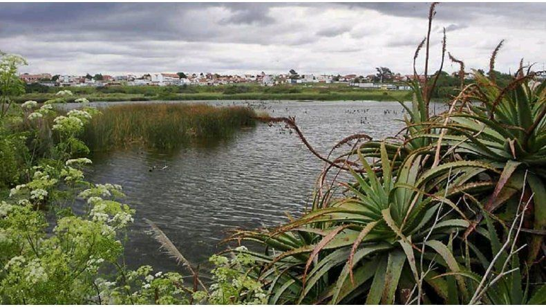 Punta Mogotes: hallan muerto a un hombre que era intensamente buscado