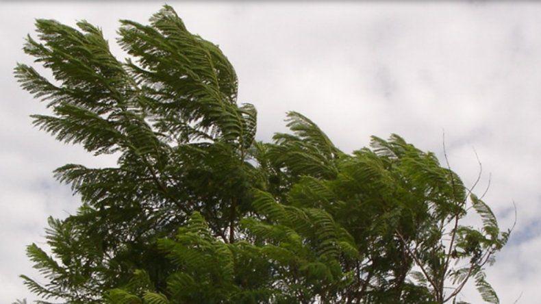 Alerta por vientos intensos para un sector de Entre Ríos