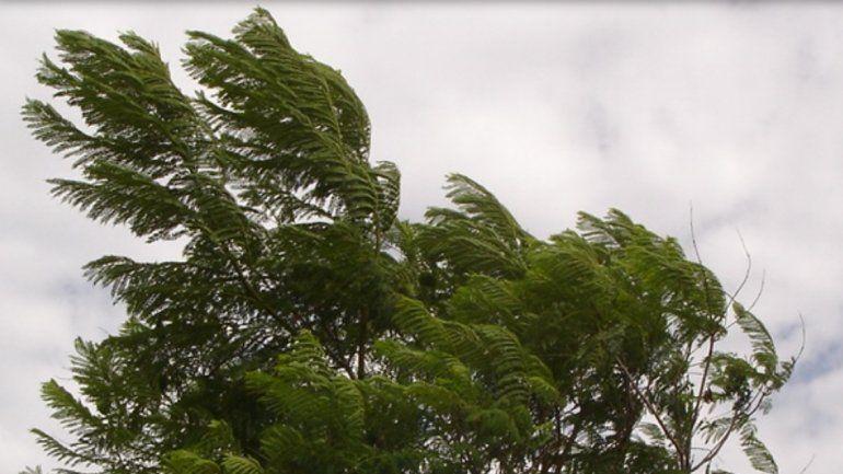 Alertan por vientos intensos en Córdoba y Santa Fe: se acercan a Entre Ríos