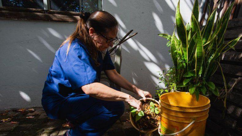 Dengue autóctono en Paraná: trabajan en un operativo conjunto Municipio y Provincia