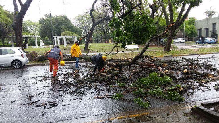 La Municipalidad de Paraná debió intervenir ante las intensas lluvias